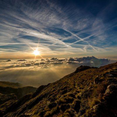 Distance Healing by Elizabeth Joyce