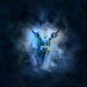 The Taurus Bull