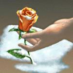 Rose-hand